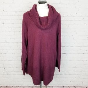 Calvin Klein|Cranberry Cowl Neck Sweater